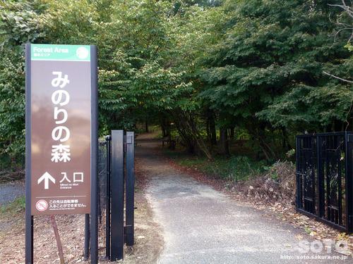 ろまんちっく村(遊歩道)