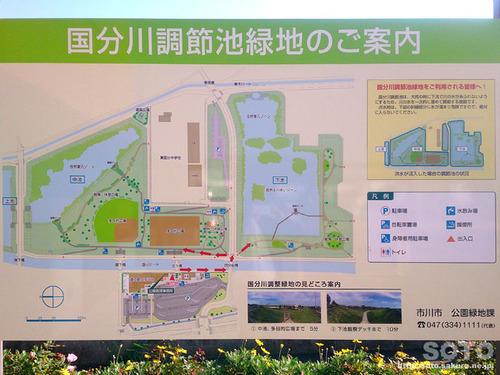 道の駅 いちかわ(6)