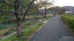 下賀茂温泉 湯の花(2)