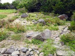 斜里町立知床博物館(高山植物園)