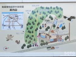 斜里町立知床博物館(周辺案内図)