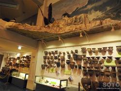 斜里町立知床博物館(2)