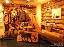 斜里町立知床博物館(3)