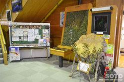 山形県立自然博物園(2)