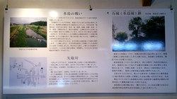 菊池十八外城展(5)