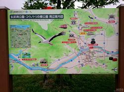 コウノトリの郷公園(03)