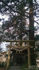 吉無田水源(水神社)