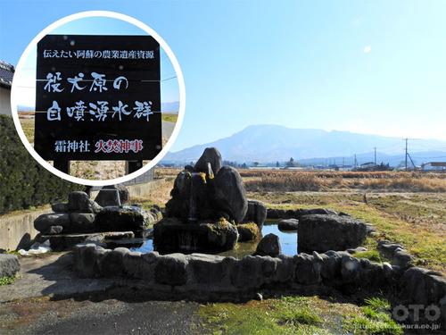 阿蘇やくいん原湧水群(2)