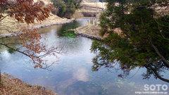 小池水源(4)