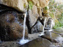 立岩水源公園(4)