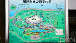 川原自然公園(1)
