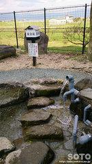前川水源(水汲み場)