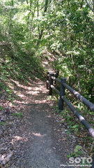 西椎屋の滝(遊歩道)