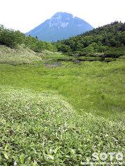 羅臼湖(2の沼/ケータイ)