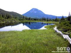 羅臼湖(3の沼/ケータイ)