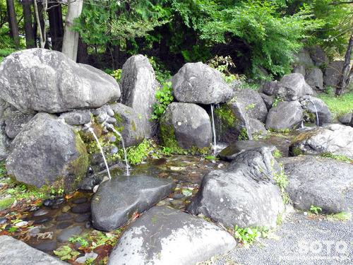 尚仁沢湧水(2)