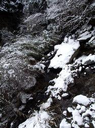 雪景色(2)