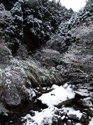 雪景色(3)