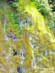 男鹿の滝(9)