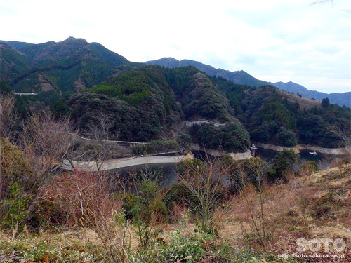 竜門ダム周辺探索(11)
