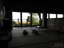 ウトナイ湖散策路(12)