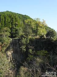 下城の滝(対岸の大イチョウ)