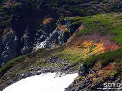 黒岳登山(16)