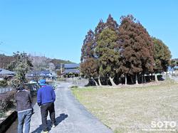 杉井川水源(1)