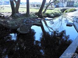 杉井川水源(4)