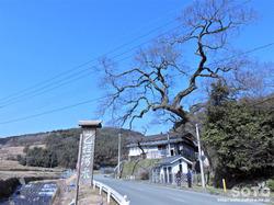 姫井の水天神(1)