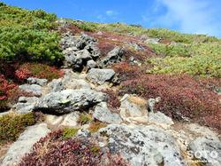 黒岳登山(桂月岳02)