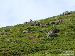 黒岳登山(桂月岳11)