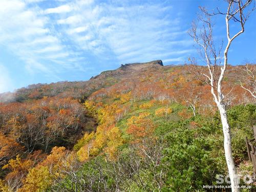黒岳カムイの森のみち2017紅葉