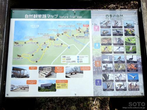 ウトナイ湖(案内板)