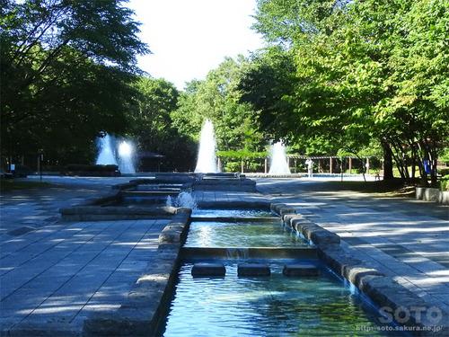 神社山 青葉公園(02)
