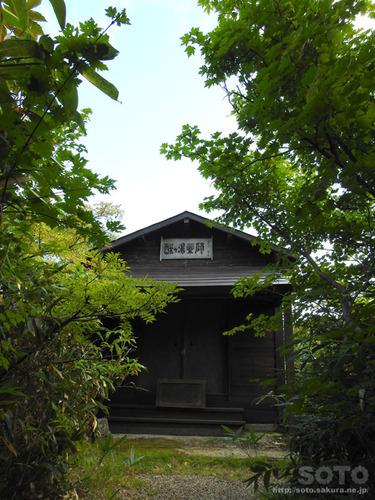 酸ヶ湯自然観察路(03)