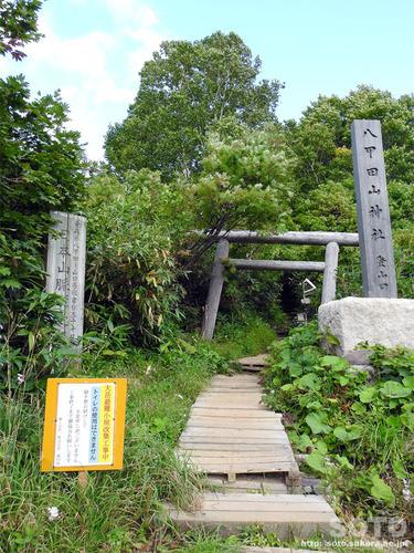 酸ヶ湯自然観察路(05)