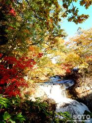 三階滝(09)
