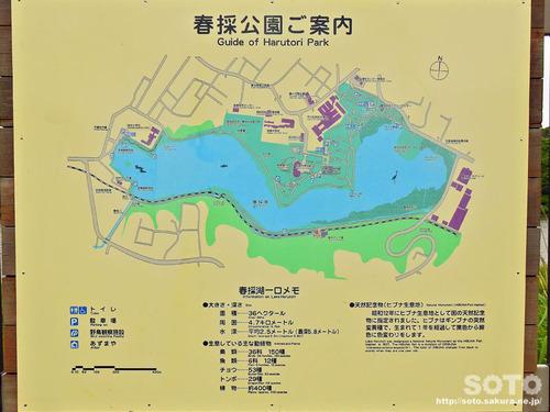 春採湖(MAP)