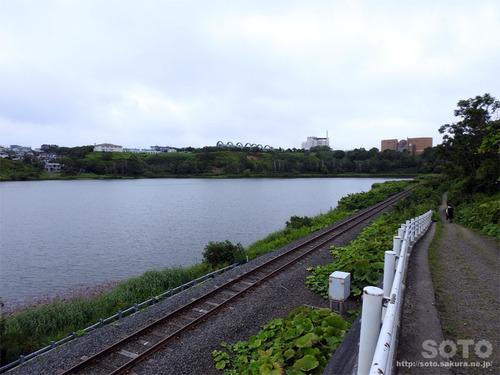 春採湖(09)