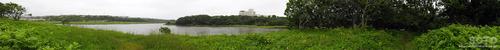 春採湖(19)