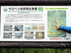 サロベツ湿原BYT(04)