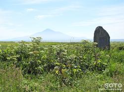 浜勇知園地(1)