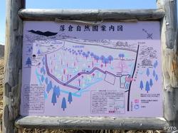 落倉自然園水芭蕉(01)