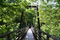 白山スーパー林道(吊り橋)