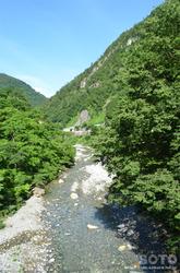 白山スーパー林道(渓流)
