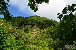 雨竜沼湿原(円山)