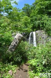 雨竜沼湿原(白竜の滝 木碑)