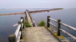 野付半島(トドワラ/橋)