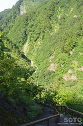 白山スーパー林道(蛇谷園地への道)